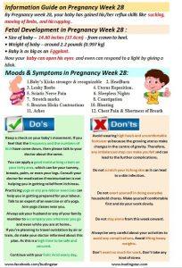 pregnancy-week-28-budding-star