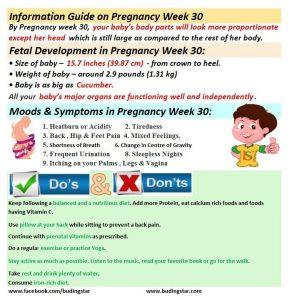 pregnancy-week-30-budding-star