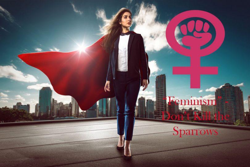 """""""Feminism""""-Don't Kill the Sparrows"""
