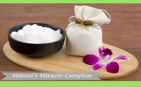 "Nature's Miracle – Benefits of ""Camphor"""