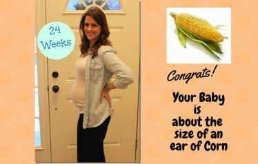 Pregnancy week 24