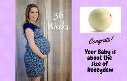 Pregnancy week 36