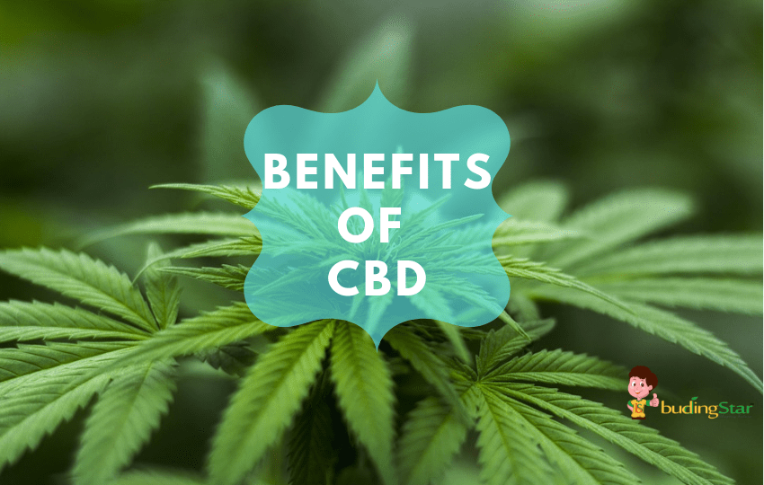 5 Medical Conditions CBD can help that you did not know