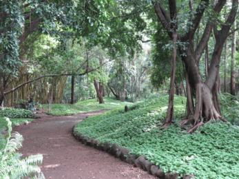 Best places to visit in Pune