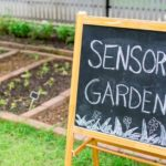 Tips For Creating A Stunning Sensory Garden